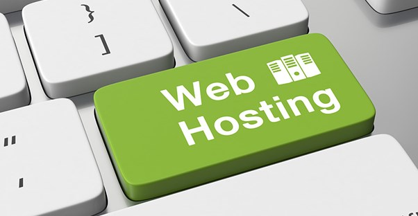 how much does web hosting cost