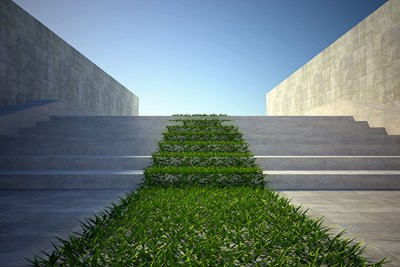 steps of a business building that chose the best sustainable grass and concrete for water conservation