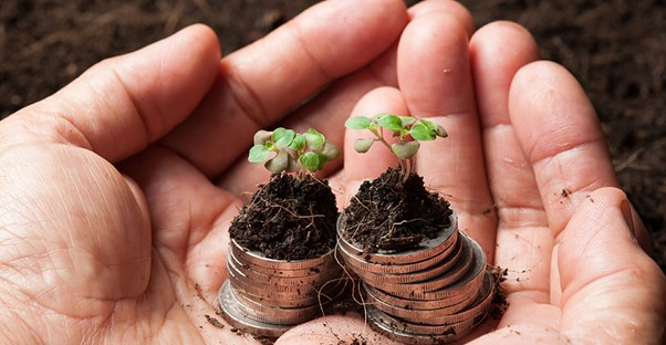a person with coins and plants in their hands to weigh the pros and cons of practicing business sustainability