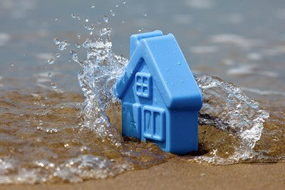 toy house in water