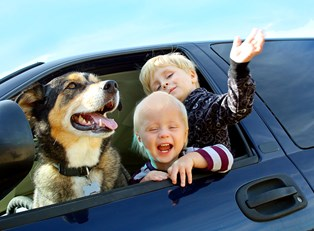Children and pets are both parts of your family, so insure them to ensure their health