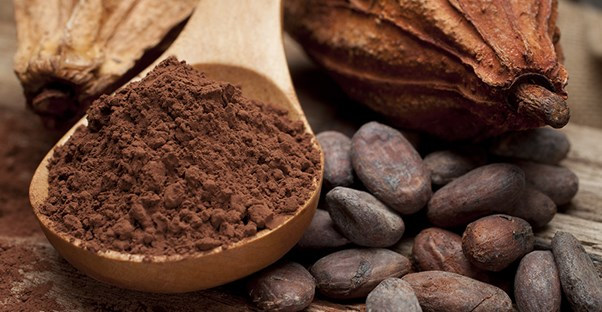 dark brown coffee bean or cocoa powder commodities laying on a wooden table