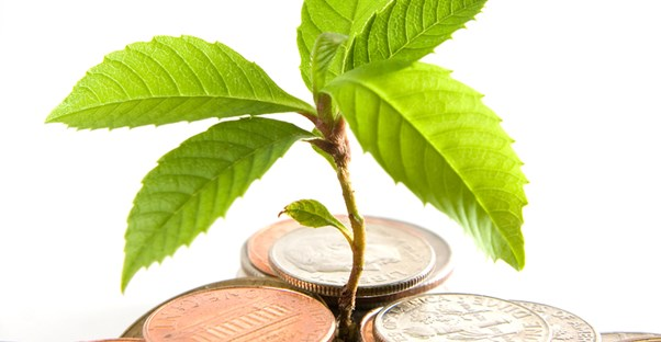 A plant growing through a stack of coins to represent how an investment strategy will grow money in mutual funds.