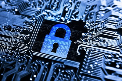 Overview of LifeLock's Identity Theft Protection Services