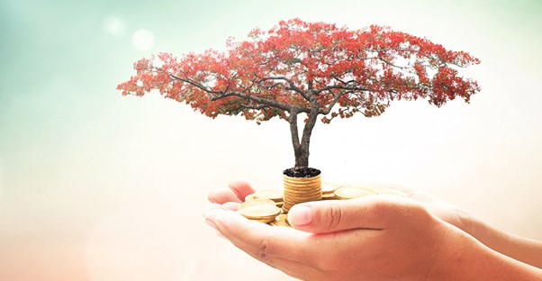 a person holding a small tree and some change to show their corporate philanthropy of planting trees and raising money