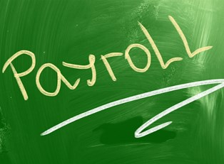 Payroll services equal more green