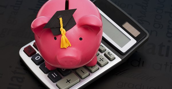 Pig in a graduation cap on a calculator