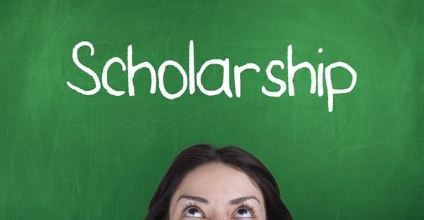 tylenol scholarship essay